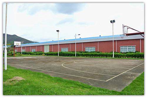 炜林纳篮球场